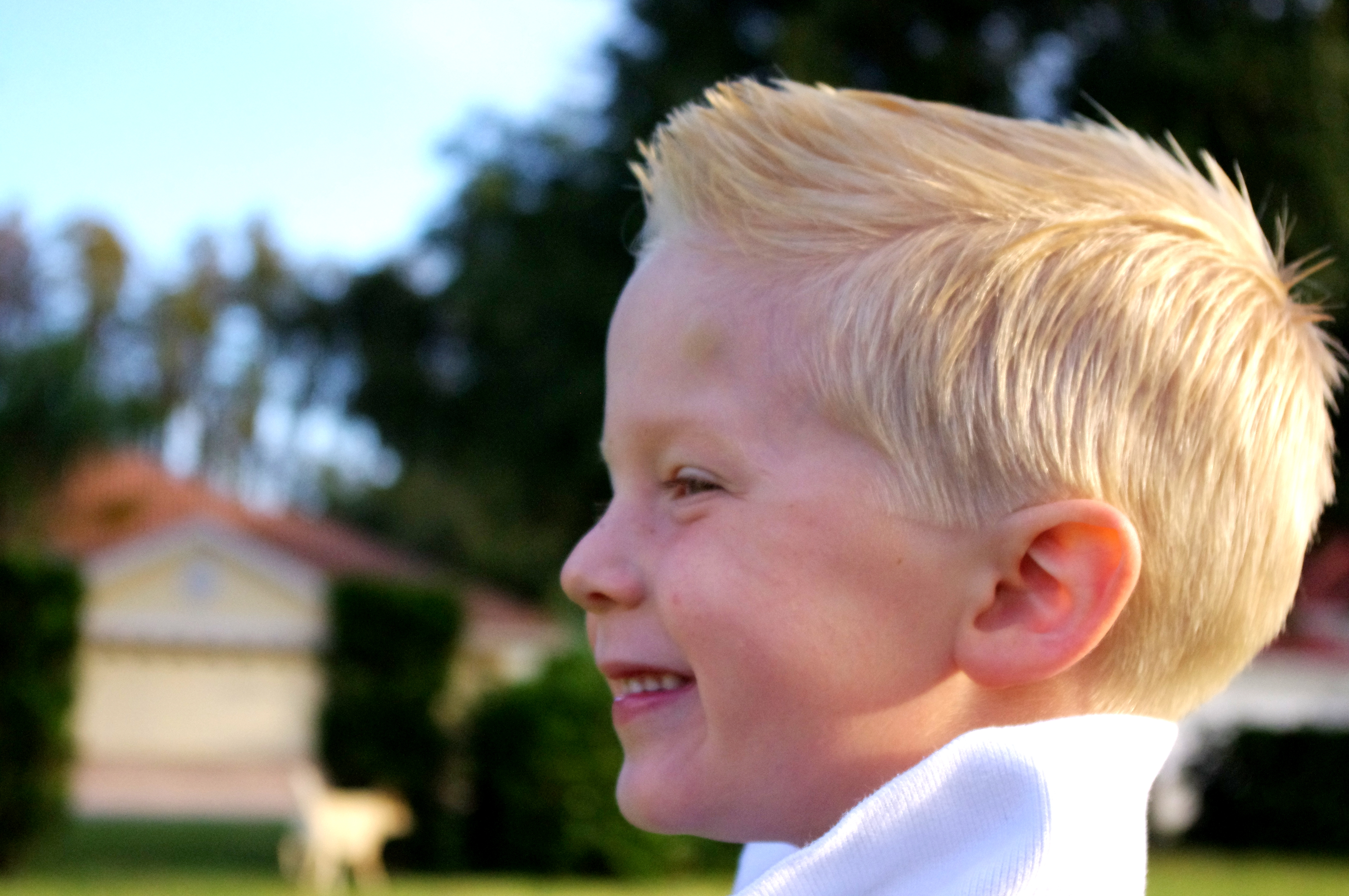 ... for surfer boy hairstyles viewing 12 images for surfer boy hairstyles