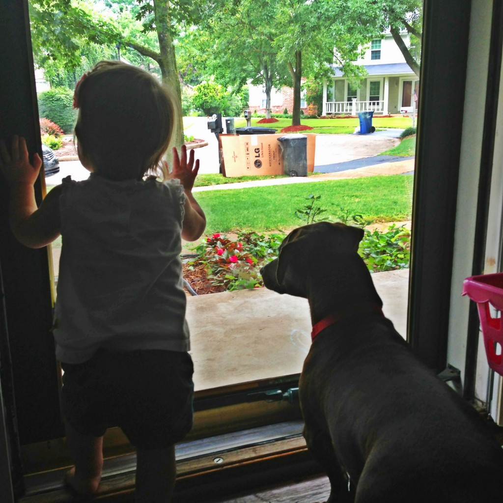 Puppies? Good. Babies? Great. Puppies and babies looking outside together? If that doesn't make your heart skip you might be a robot...